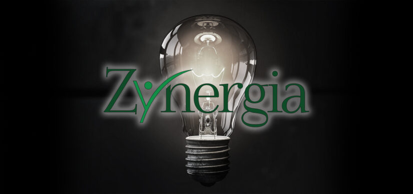 Zynergia - About Us